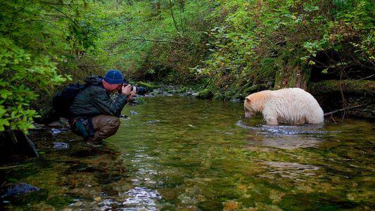 Fotos de Instagram: fotógrafos trabajando