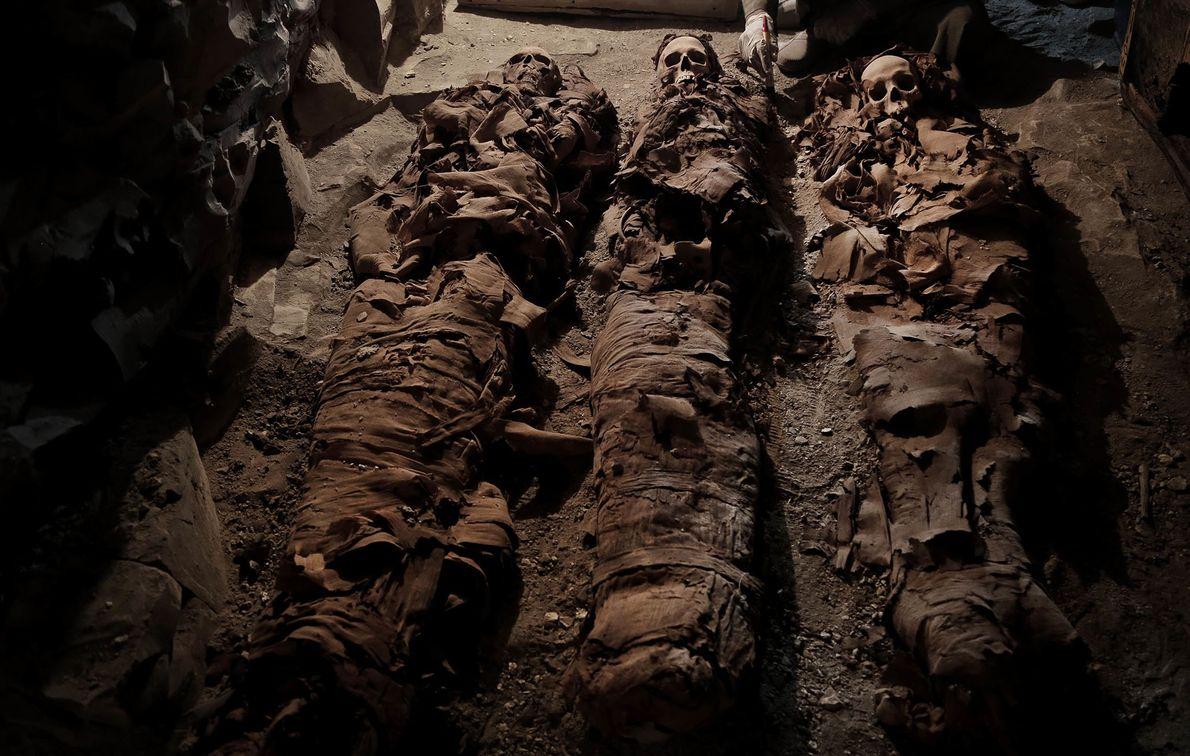 Tres momias