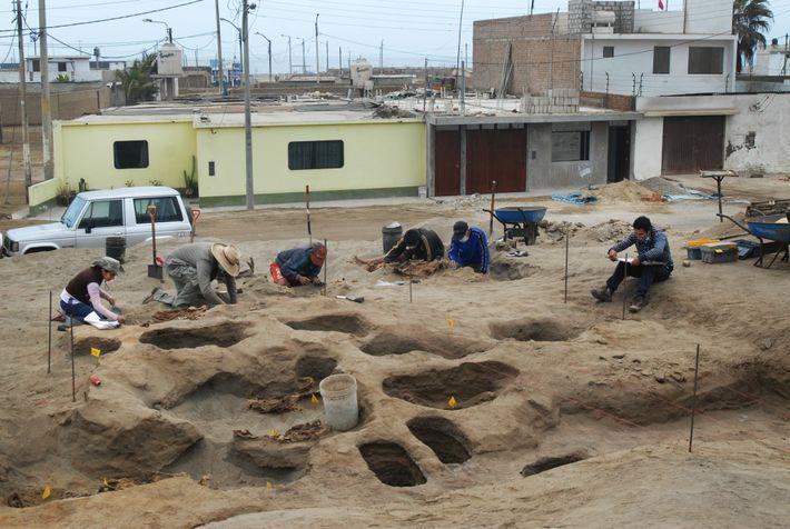 El arqueólogo Gabriel Prieto
