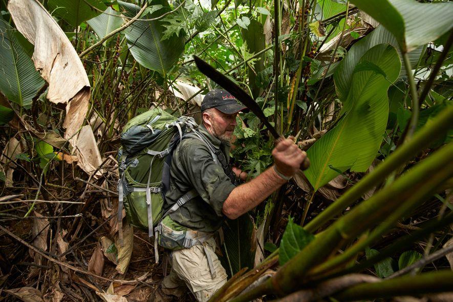 Un miembro de las fuerzas especiales británicas (SAS) se adentra en la selva para abrir paso ...
