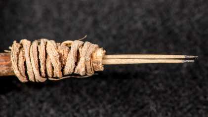 Una aguja de tatuaje de 2000 años