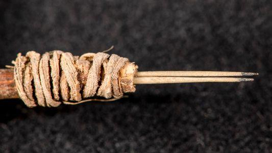 Identifican una aguja para tatuajes de 2.000 años de antigüedad