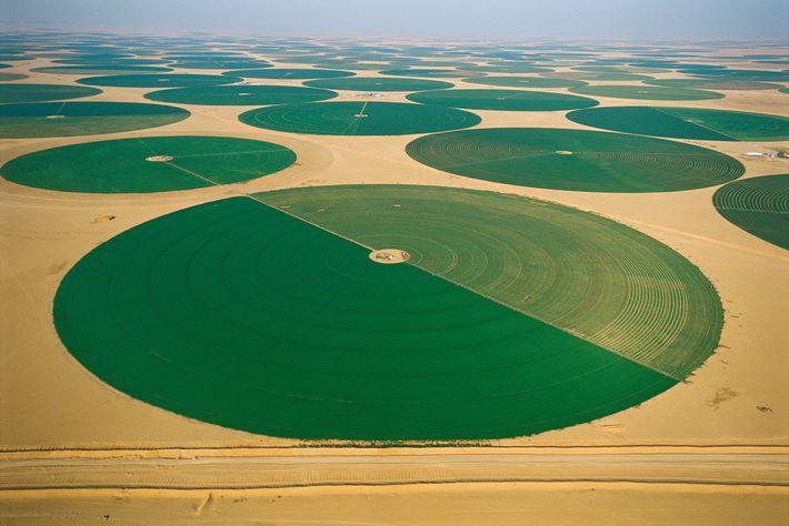 Desierto de Rub al-Jali