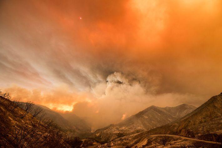 Incendio en el bosque nacional de Los Ángeles