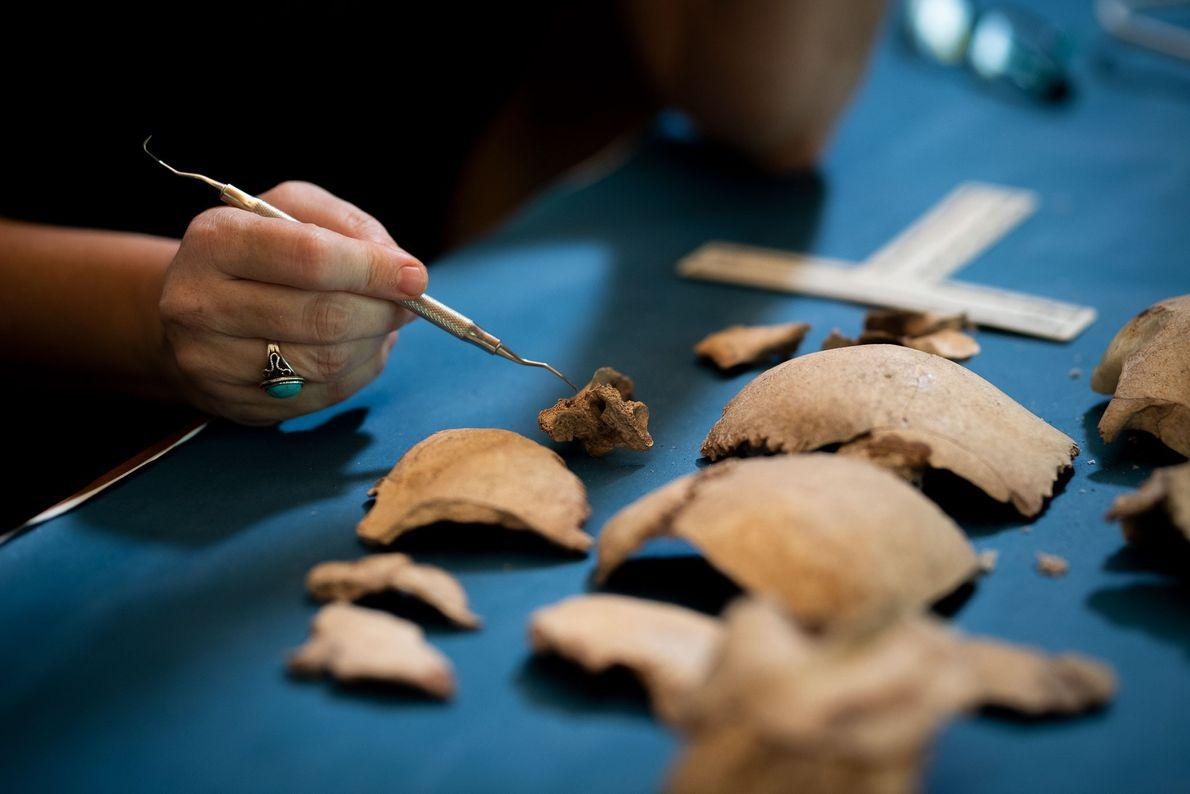 Restos óseos humanos