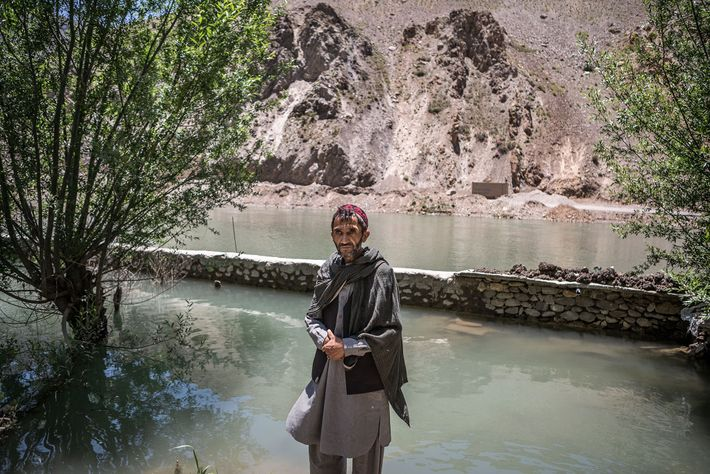 Seyed Jalil
