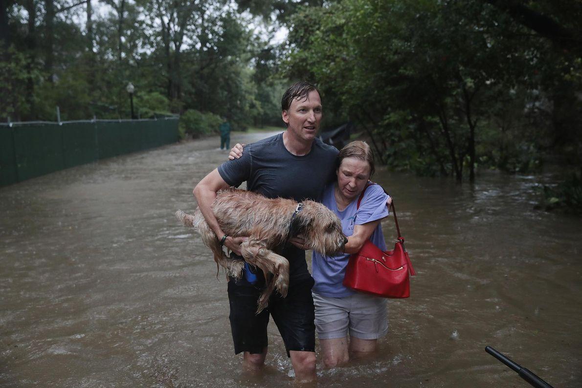 Andrew White ayuda a una vecina