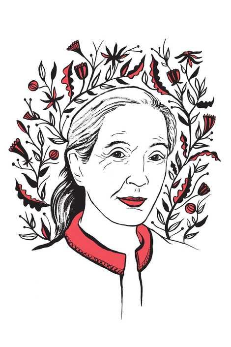 Ilustración de Jane Goodall por Kimberly Glyder para el libro «In Praise of Difficult Women».