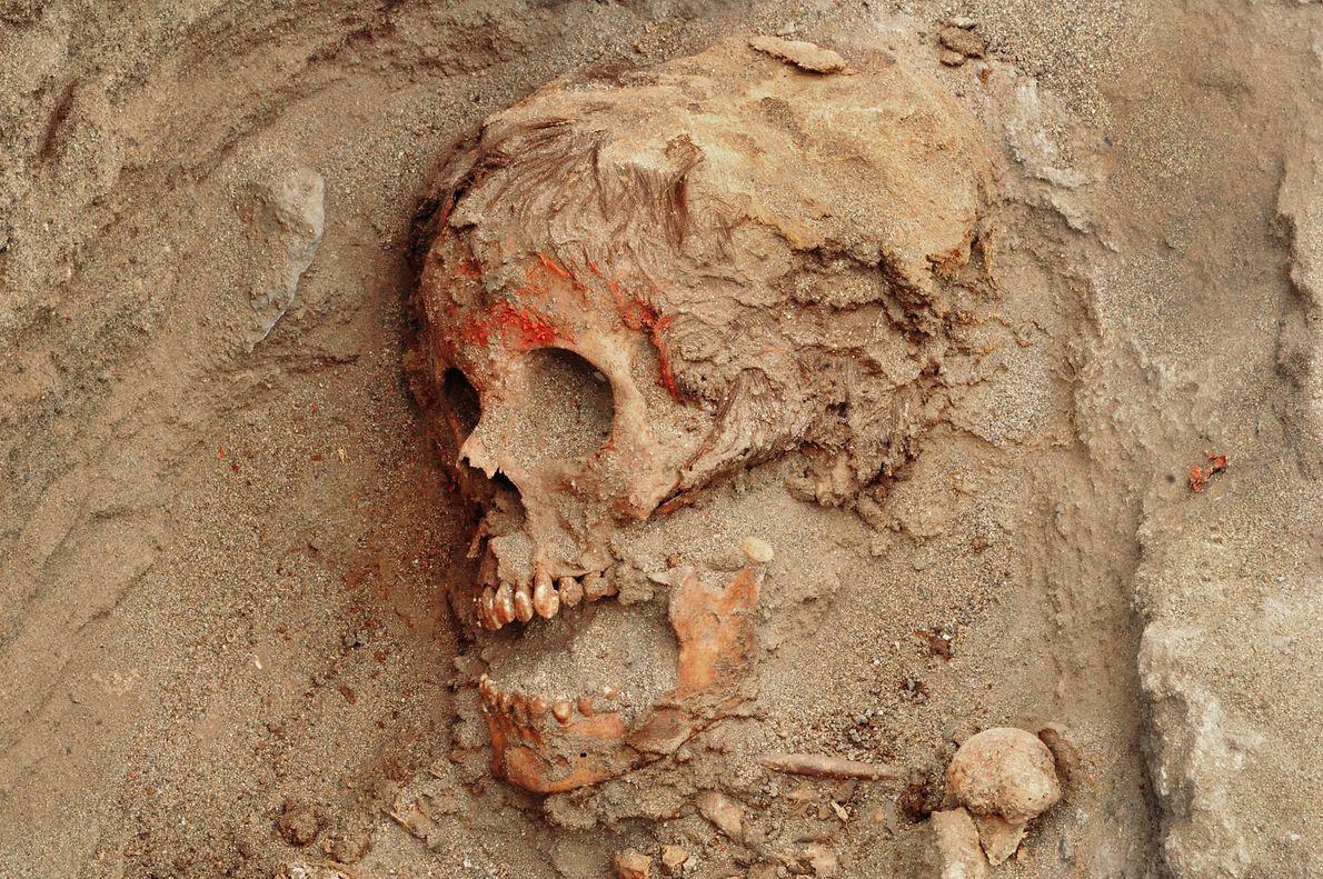 Huesos humanos
