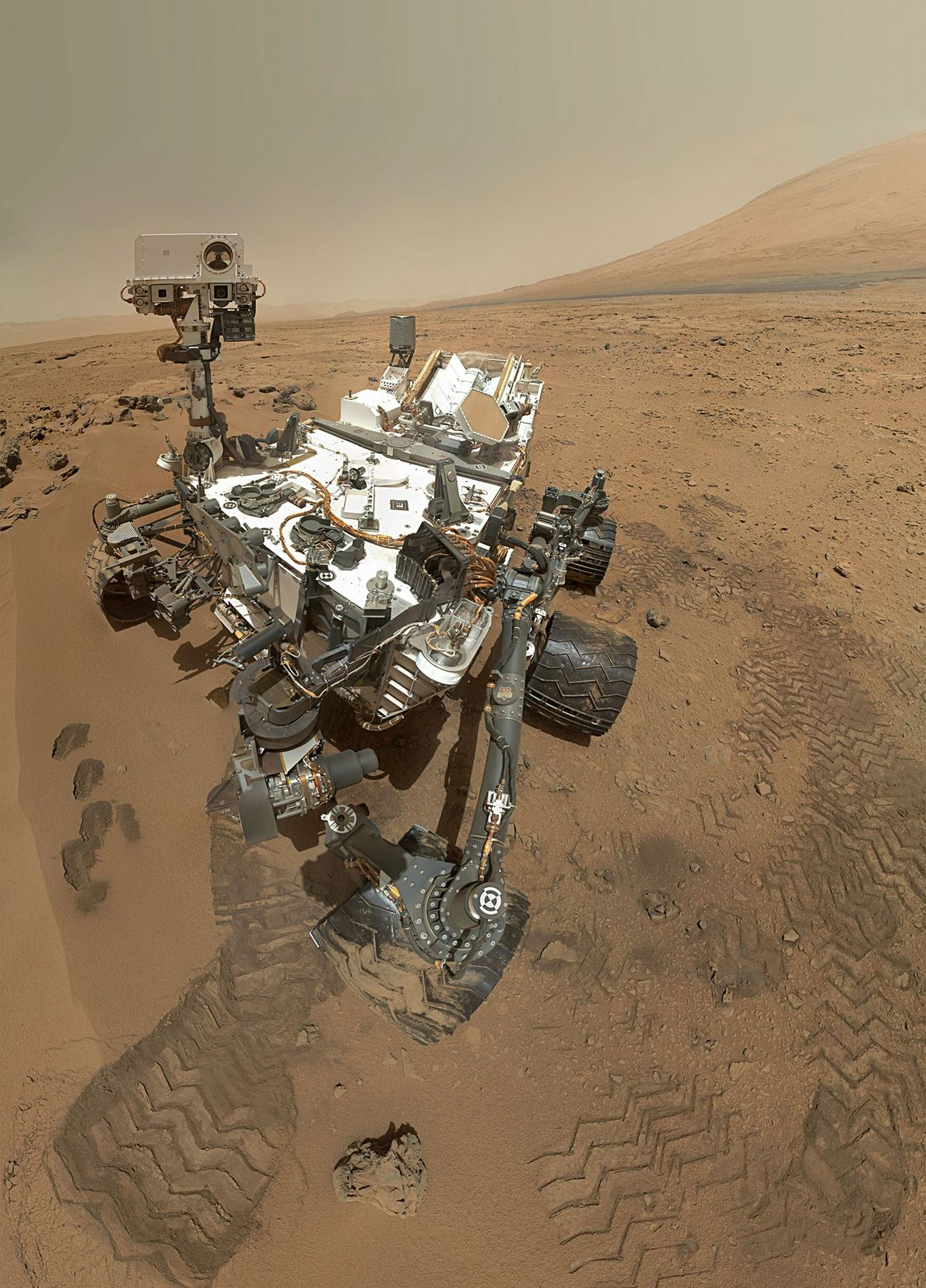 Selfie marciano