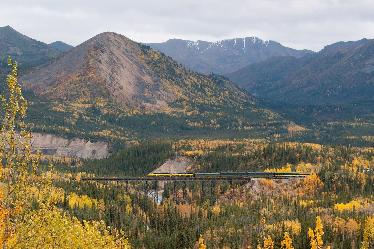 Parque nacional de Denali, Alaska