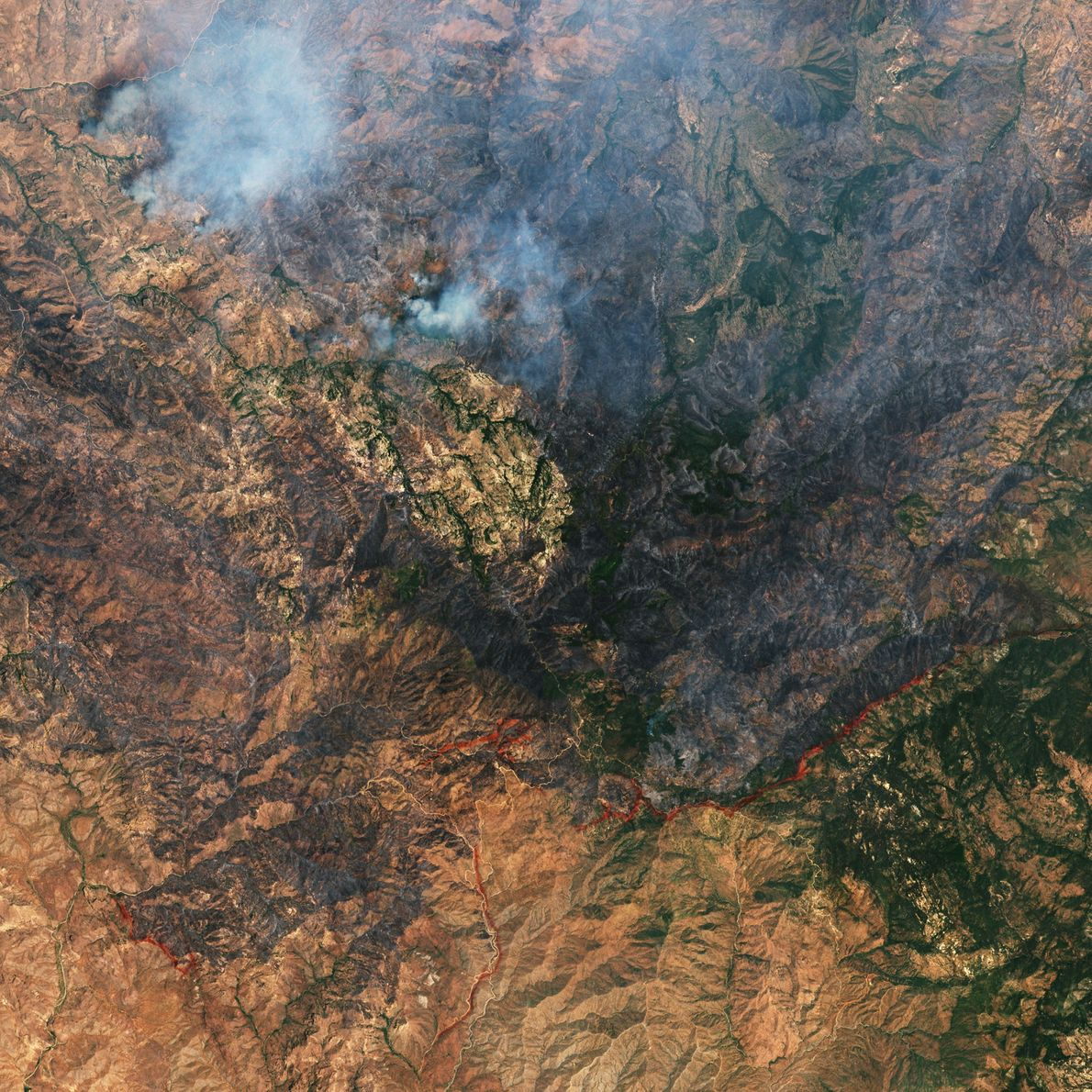 Incendio en Phoenix, Arizona