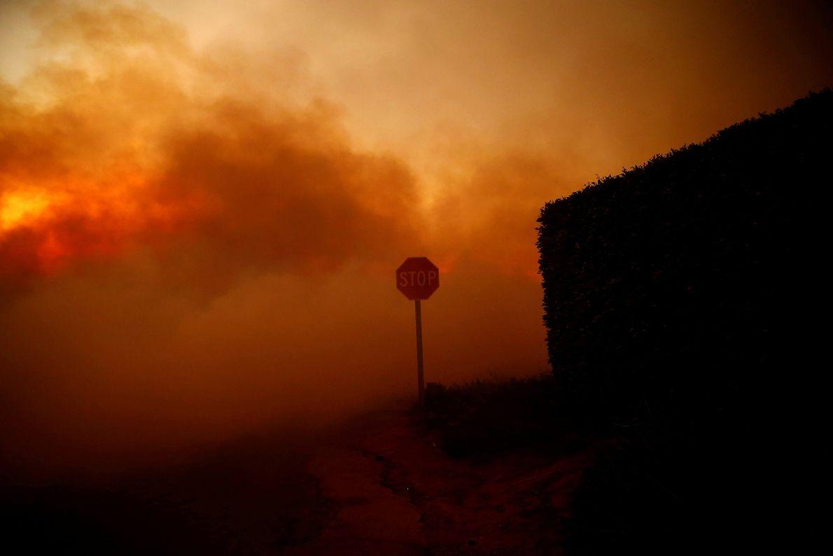 Incendio de Woolsey