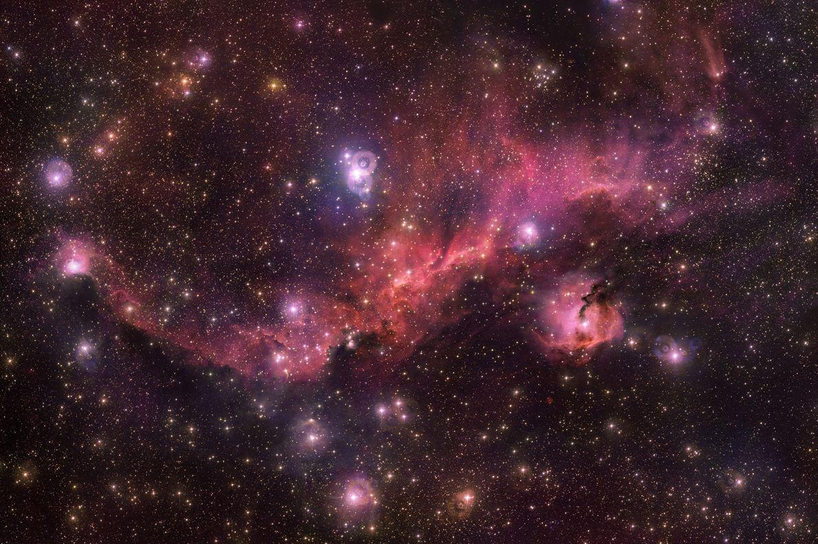 Nebulosa de la Gaviota