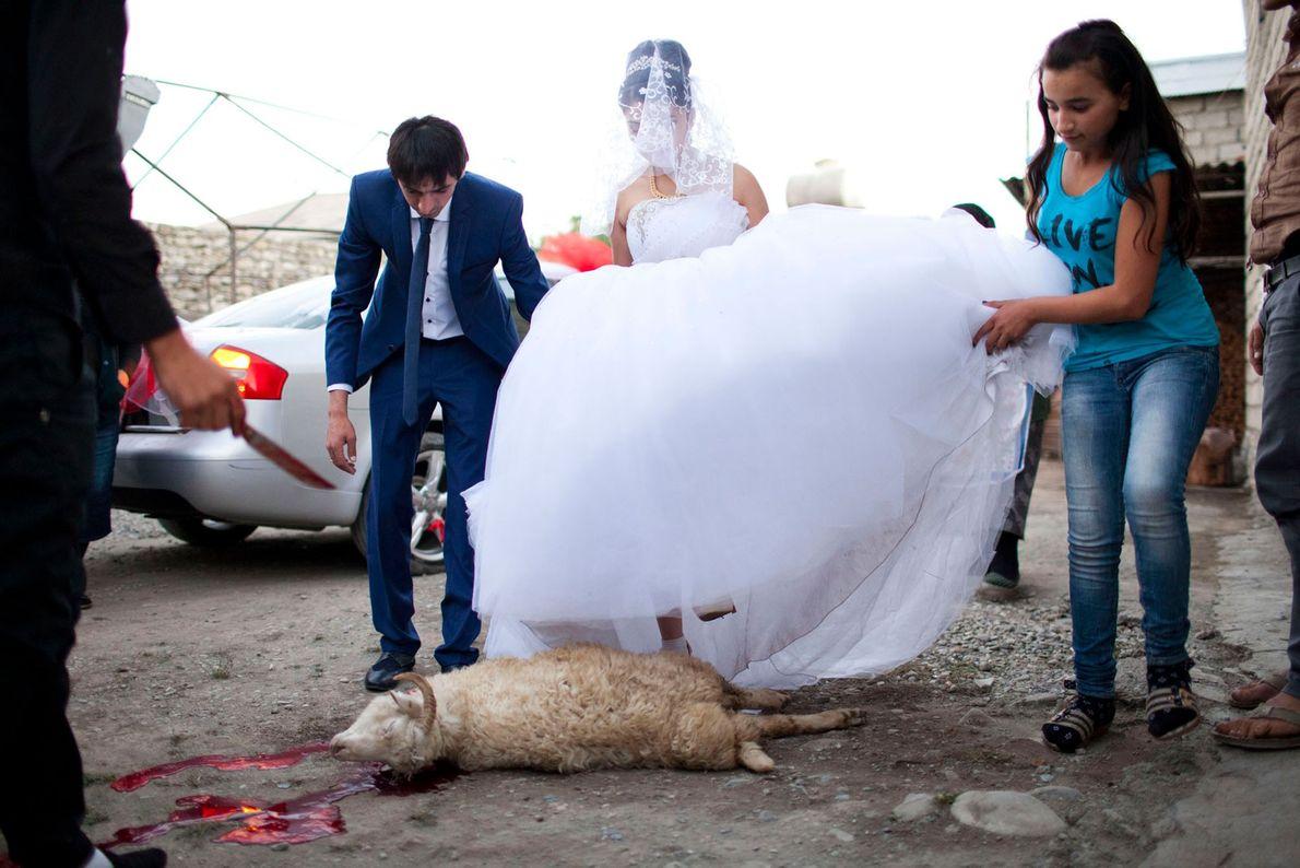Imagen de la novia y el novio pasando sobre una oveja muerta