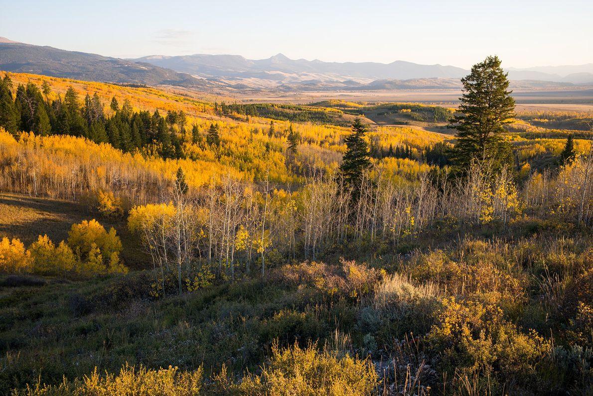 Parque nacional de Grand Teton, Wyoming