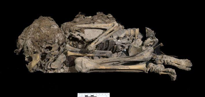 Restos de un niño enterrado hace 6000 años