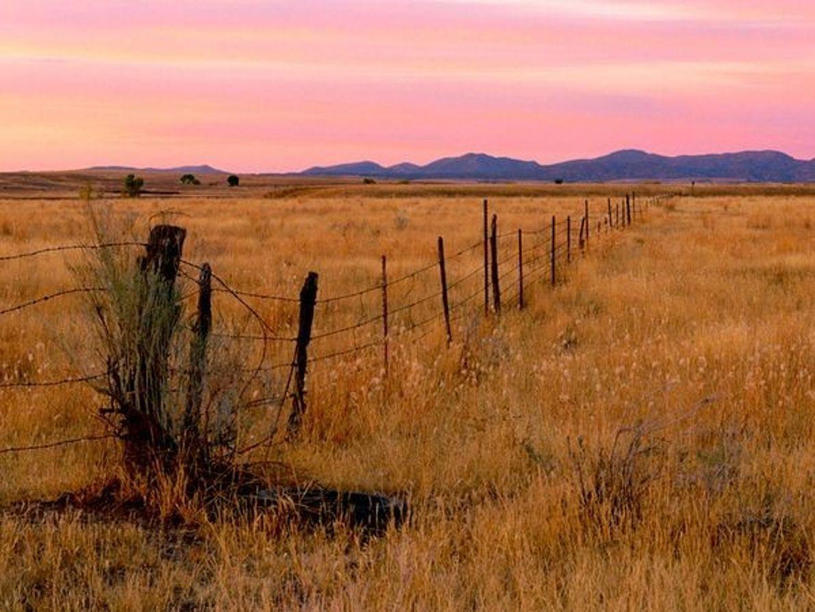 Cerca Prairie