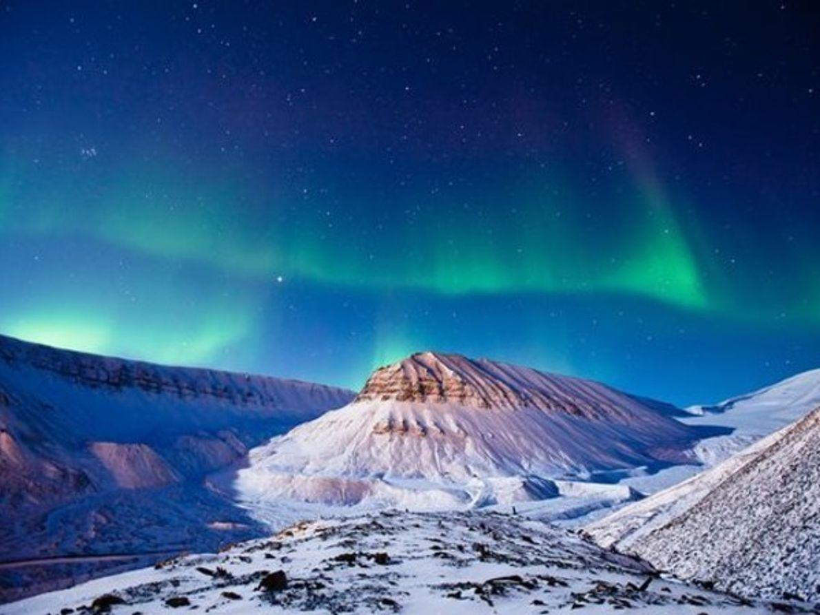 Brillo Ártico