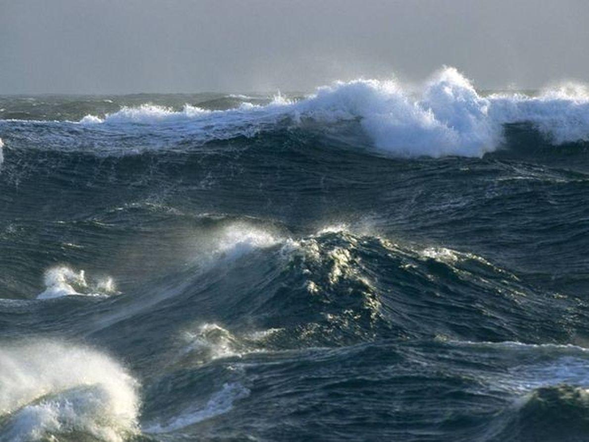 Oceano del Sur