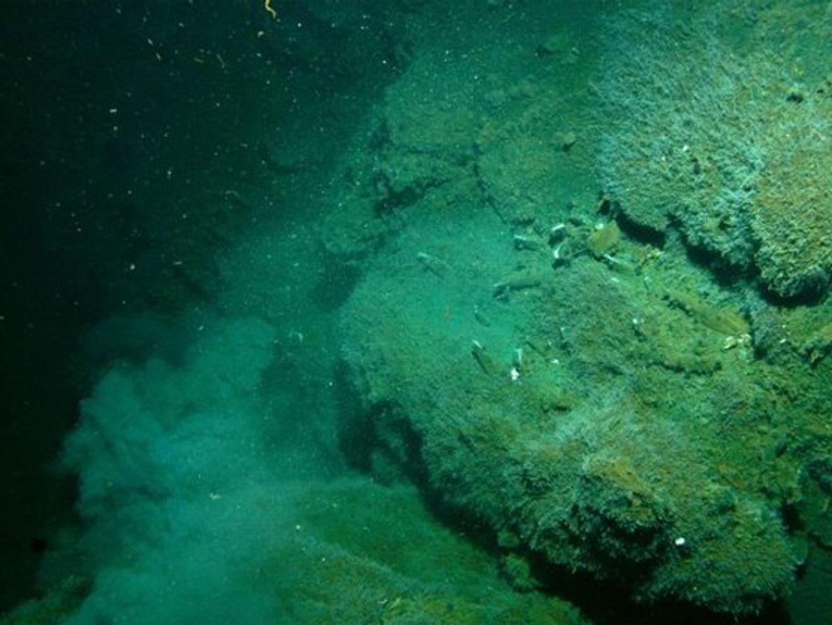 Humaredas subterraneas