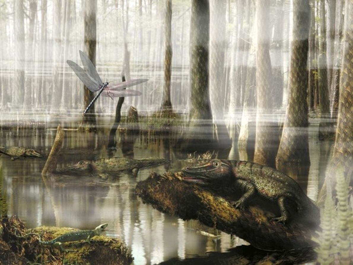 Humedal del Carbonífero