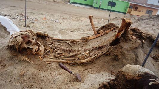 Las víctimas de un sacrificio chimú de hace más de 500 años