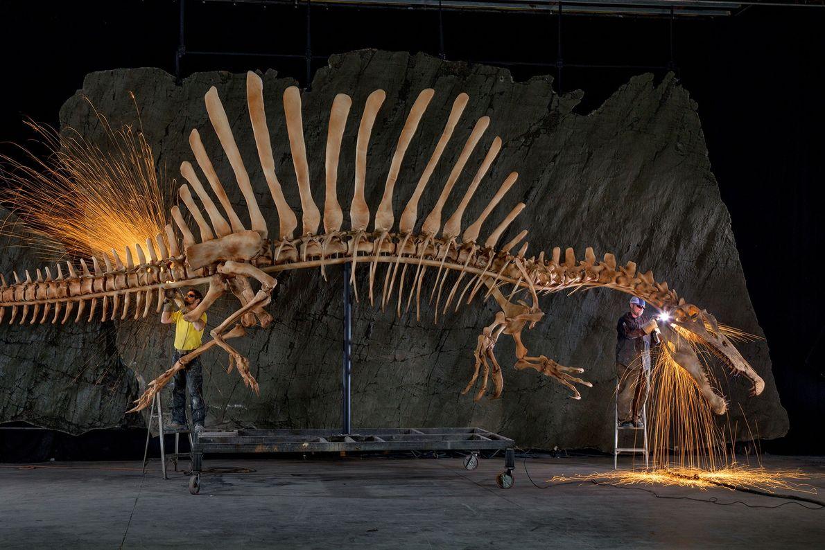 Spinosaurus aegypticus