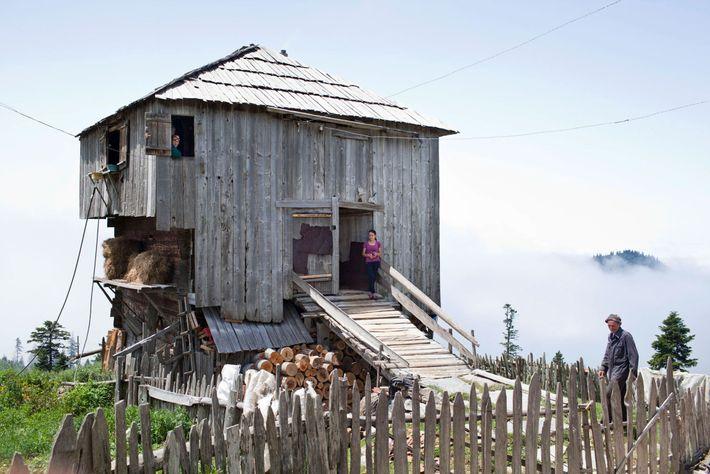 Imagen de una granja de madera en Georgia