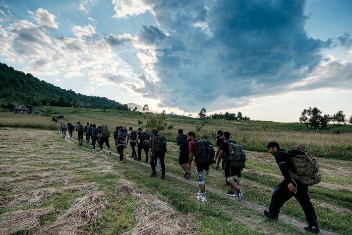 Un grupo de migrantes y refugiados atraviesa Bosnia