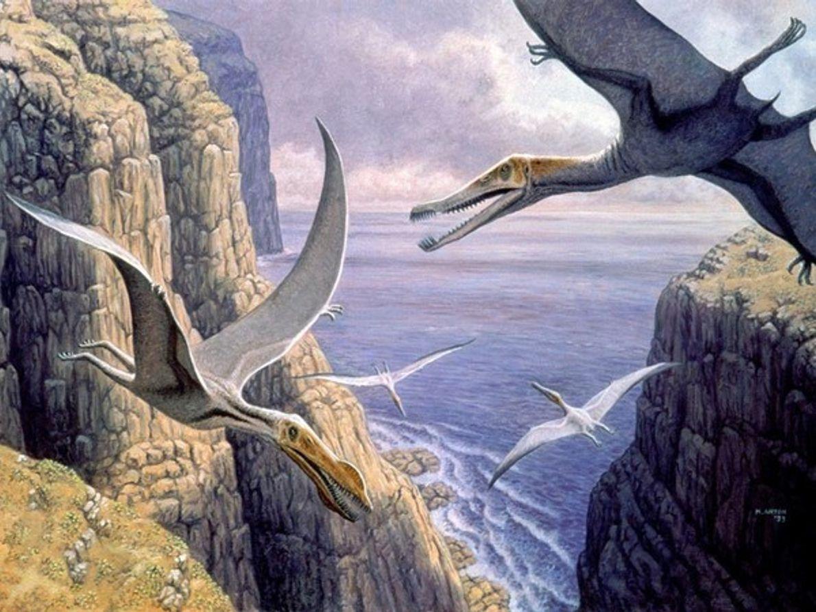 Pterosaurios voladores