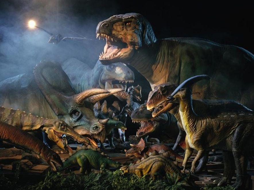 Modelos de dinosaurios    Esperando a ser renovados, modelos de dinosaurios de diferentes escalas abarrotan un almacén en ...