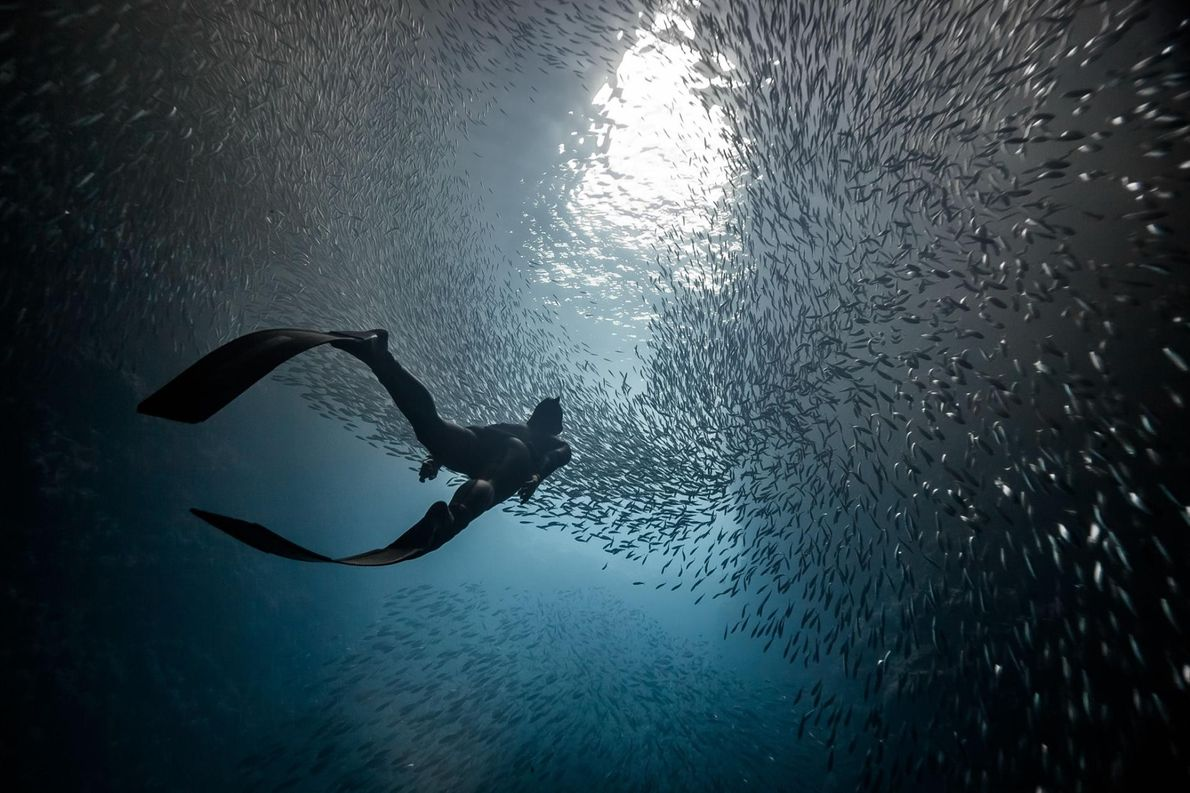 MARC HENAUER, NATIONAL GEOGRAPHIC YOUR SHOT
