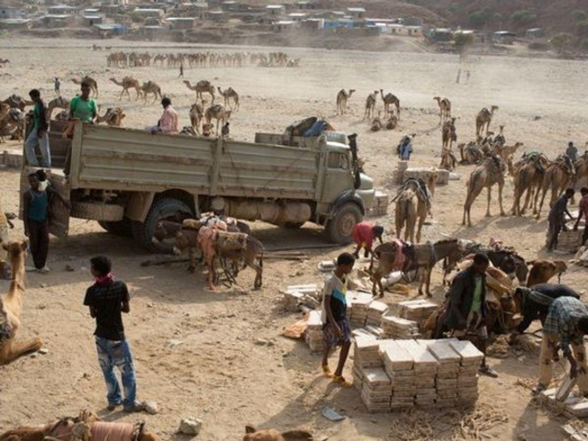 En la ciudad de Berahile, Etiopía, los trabajadores descargan losas de sal recolectadas de …