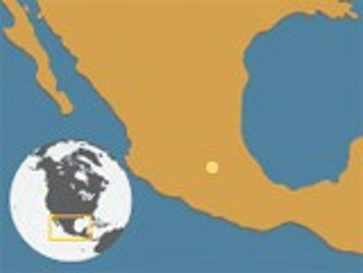 Axolote mexicano