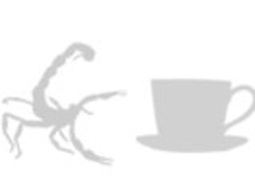 Tamaño de un escorpión