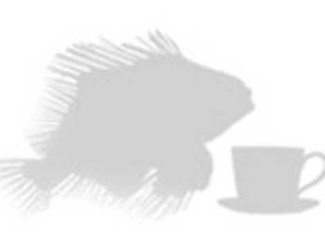 Tamaño pez león