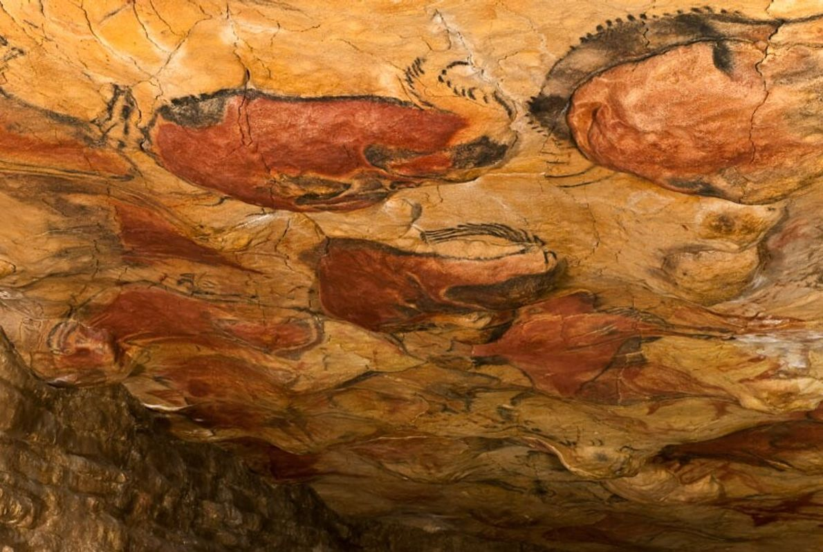 Cuevas de Altamira y arte rupestre paleolítico del norte de España. Estas cuevas fueron declaradas Patrimonio de ...
