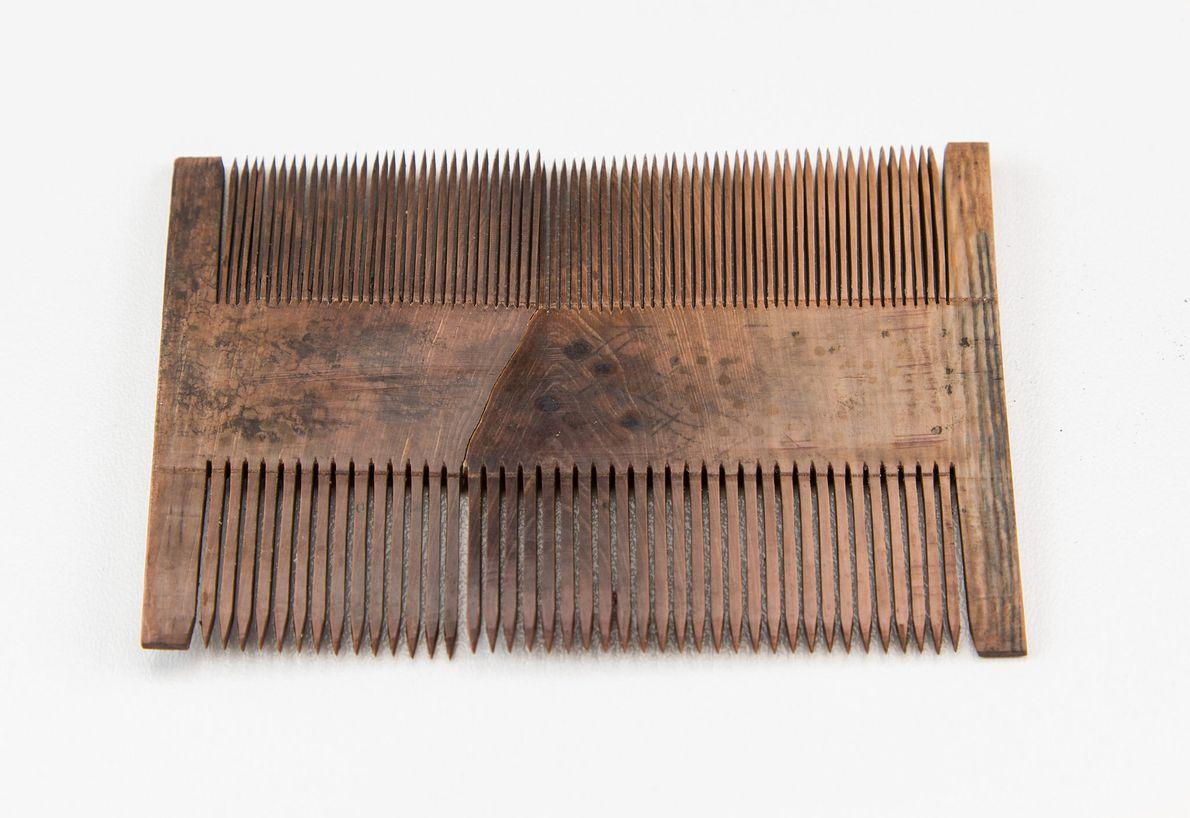 Peine de madera preservado en un naufragio del Mar del Norte