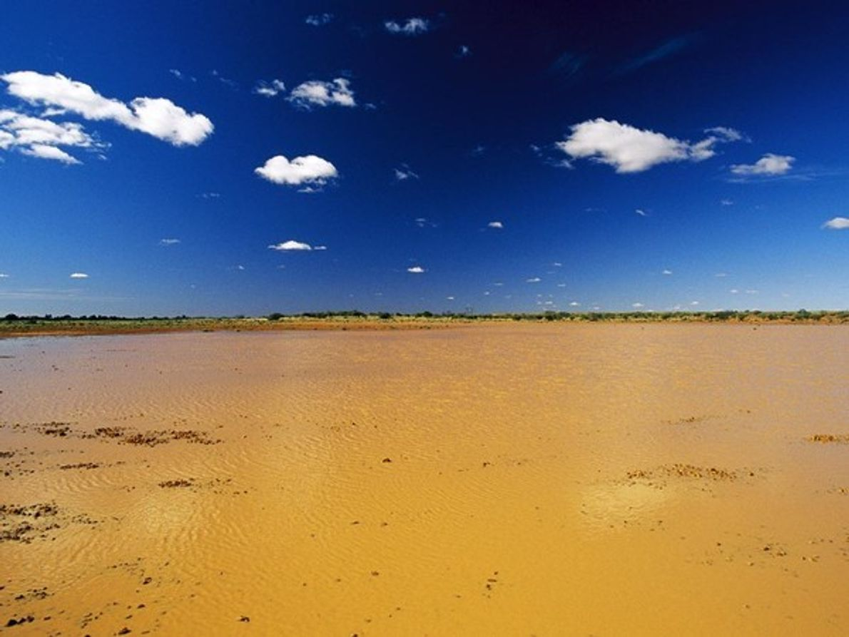 Los lagos poco profundos como éste, creado por las lluvias estacionales de Australia, se forman y …
