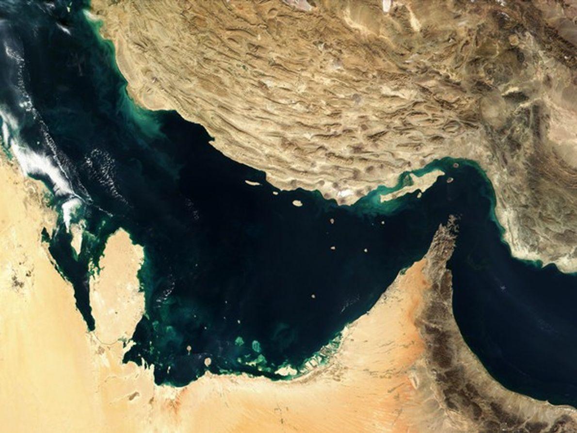 Actividad de la Placa del Golfo Pérsico