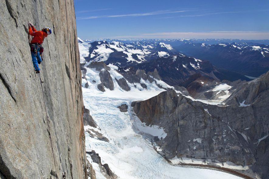 Lama en Cerro Torre
