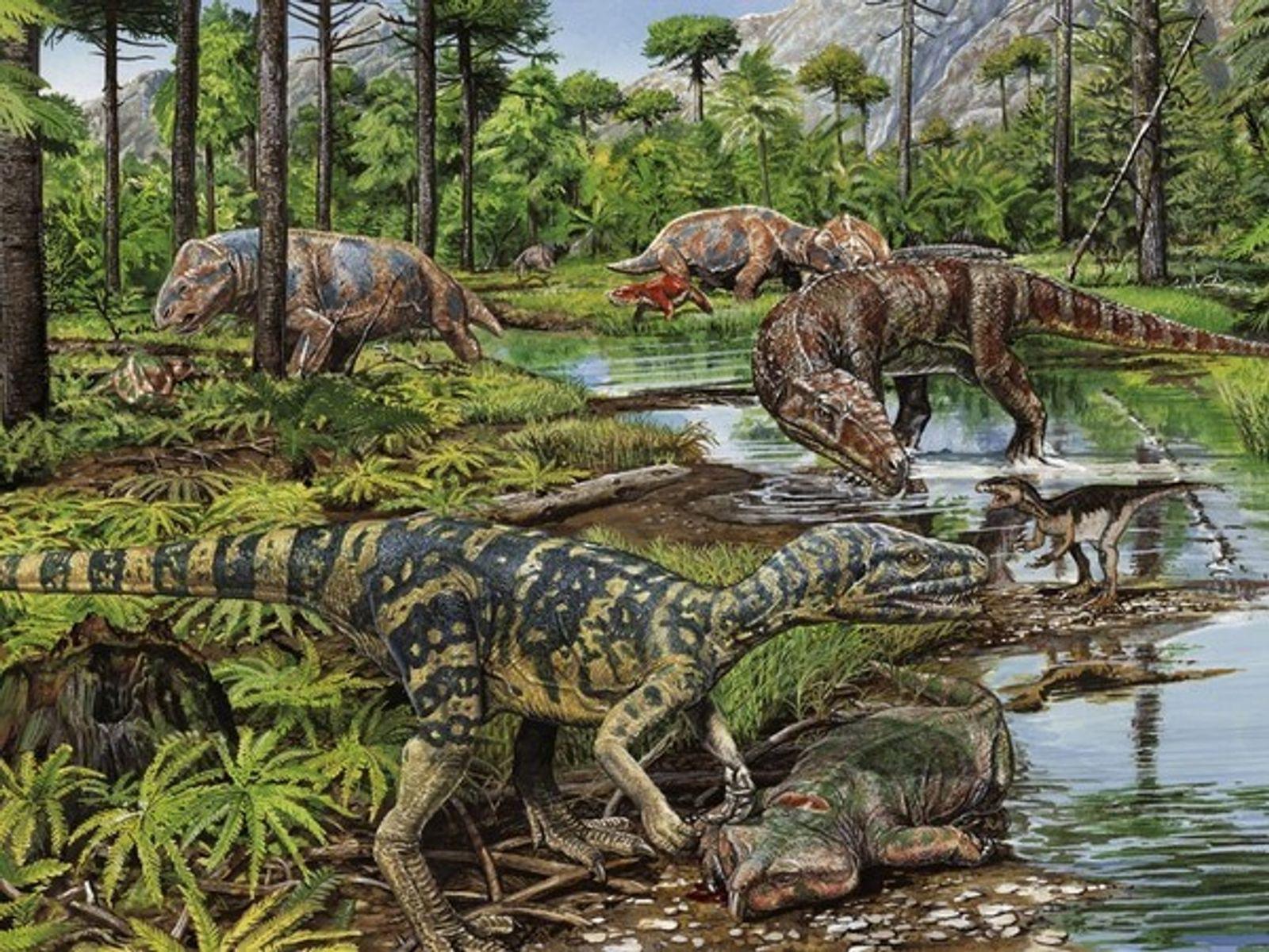 La Extincion De Los Dinosaurios National Geographic Los dinosaurios de juguete son nuestra pasión, comienza tu colección con un dinosaurio schleich elige el tuyo en nuestra selección de dinosaurios de juguete de marketlace, y adentrarte en un. la extincion de los dinosaurios