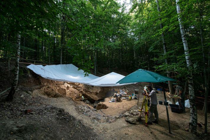 Las excavaciones de la cueva del Unicornio