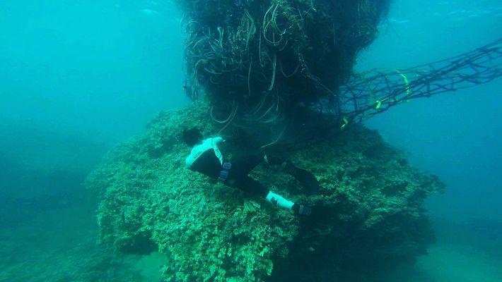 La monstruosa red de 11 toneladas que amenaza la costa hawaiana