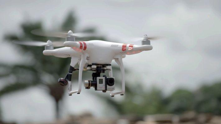 Drones para desenmascarar a traficantes de marfil