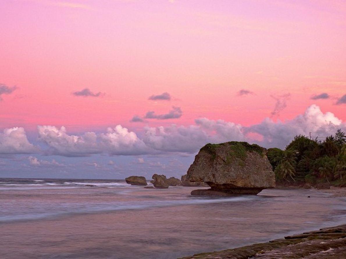 Una seta rocosa en Barbados