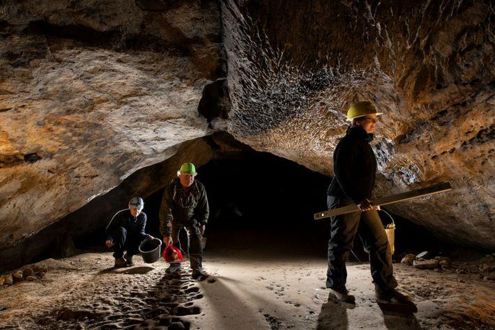 Los arqueólogos pasan por la galería principal de la cueva del Unicornio