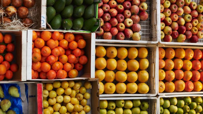 Desperdiciamos un tercio de la comida mundial
