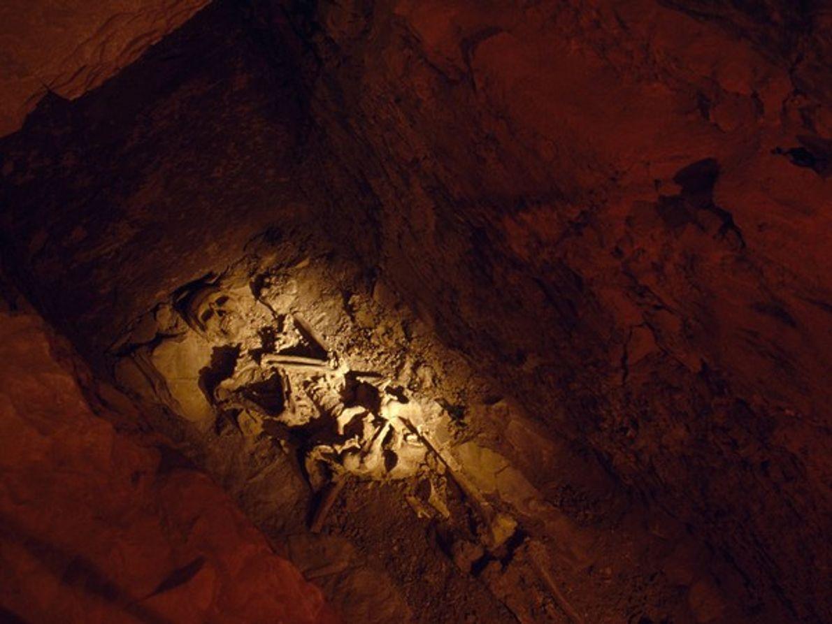 Esqueleto de tumba egipcia